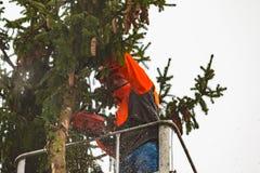 RYCZYWOL, POLONIA - 18 de febrero de 2017 - árbol del corte del leñador con una motosierra Imagen de archivo
