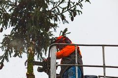 RYCZYWOL, POLONIA - 18 de febrero de 2017 - árbol del corte del leñador con una motosierra Imagenes de archivo