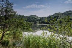 Rydal Water Cumbria. Landscape scene at Rydal Water Cumbria stock photo