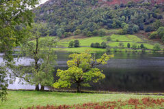 Rydal Water in the English Lake District Stock Photography