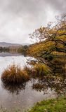 Rydal water Royalty Free Stock Photos