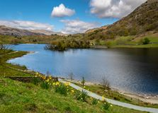 Rydal Water in the Lake District, England. Springtime at Rydal Water in the Lake District of England, Great Britain Royalty Free Stock Photography