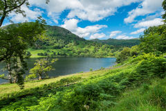 Rydal Water in the Lake District. Royalty Free Stock Photo