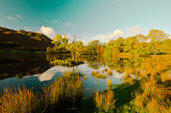 Rydal Water. Morning view over Rydal water, Cumbria. Lake-District. England Stock Photo