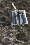 Rydel na gazonie. Fotografia Stock