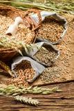 Rye, ячмень и пшеница лежать для хорошего хлеба Стоковые Изображения