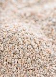 Rye (Background) Stock Image