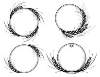 Rye, barley or wheat round frames or wreath royalty free illustration
