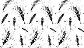 Rye, barley and wheat seamless pattern vector illustration