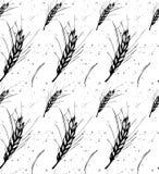 Rye, barley, wheat black and white pattern royalty free illustration