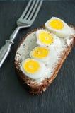 Rye bread bruschetta. Stock Image