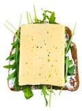 Rye bread, cheese and fresh arugula sandwich Stock Photos