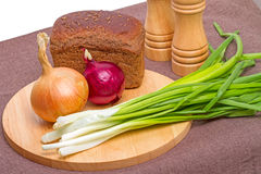 Rye bread and onion Royalty Free Stock Photo