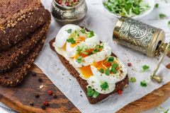 Rye bread sandwich with boiled egg, cheese, freshly ground pepper and daikon or radish sprouts. Delicious gourmet Breakfast. Selective focus royalty free stock photo
