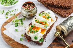 Rye bread sandwich with boiled egg, cheese, freshly ground pepper and daikon or radish sprouts. Delicious gourmet Breakfast. Selective focus stock images