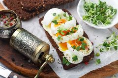 Rye bread sandwich with boiled egg, cheese, freshly ground pepper and daikon or radish sprouts. Delicious gourmet Breakfast. Selective focus stock photography