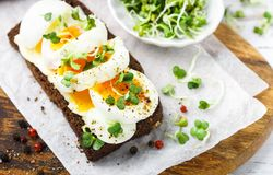 Rye bread sandwich with boiled egg, cheese, freshly ground pepper and daikon or radish sprouts. Delicious gourmet Breakfast. Selective focus stock photos