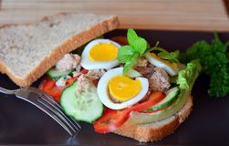 Rye bread sandwich with tuna fish, eggs, tomato and cucumber Royalty Free Stock Photos