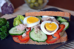 Rye bread sandwich with tuna fish, eggs, tomato and cucumber Royalty Free Stock Images