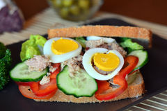 Rye bread sandwich with tuna fish, eggs, tomato and cucumber Stock Images