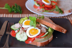 Rye bread sandwich with tuna fish, eggs, tomato and cucumber Royalty Free Stock Photo
