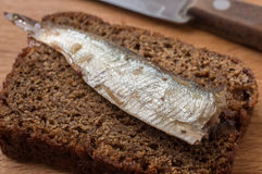 Rye bread with sardine Royalty Free Stock Images