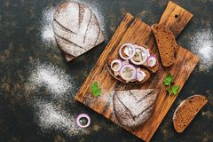 Rye bread and slices of a herring with onions.Top view, copy space. Rye bread and slices of a herring with onions.Top view, copy space Stock Photography
