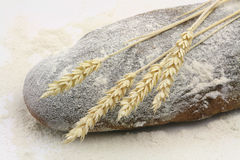 Rye bread and spikes of rye and flour Royalty Free Stock Image