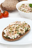 Rye bread with tuna and homemade cheese, vertical Stock Photography