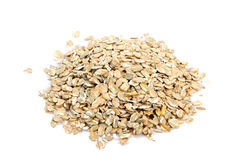 Rye cereal. On white background. It is common ingredient of healthy meal Royalty Free Stock Image