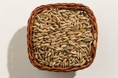 Rye cereal grain. Top view of grains in a basket. Close up. Stock Image