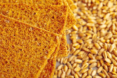 Rye crispbread with grains of wheat Stock Image