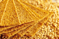 Rye crispbread with grains of wheat royalty free stock image