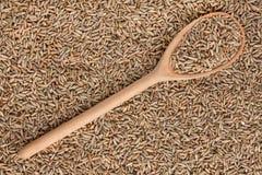 Rye in einem hölzernen Löffel Lizenzfreie Stockfotos