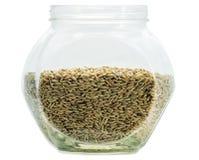 Rye grain Stock Photo