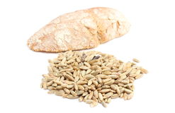 Rye grain and slice of bread on white background Stock Image