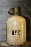 Rye grains Stock Image