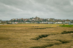 Rye on the hill Royalty Free Stock Photo