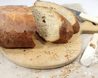 Rye homemade bread. On a wooden cutting board Royalty Free Stock Photos