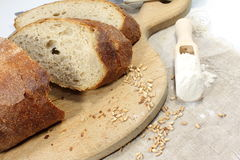 Rye homemade bread Royalty Free Stock Photo