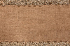 Rye lying on sackcloth Royalty Free Stock Images