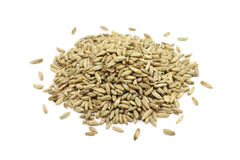 Rye malt grains Royalty Free Stock Photography