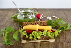 Rye sandwich with cheese, vegetables, pesto Royalty Free Stock Photography