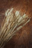 Rye spikelets on wooden background Stock Images