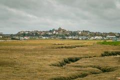 Rye sur la colline photo libre de droits