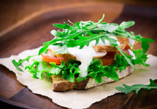 Rye toast with green leaf, tomato and chicken Royalty Free Stock Image