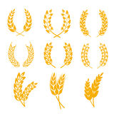 Rye wheat ears wreaths vector elements for bread and beer labels, logos Royalty Free Stock Image