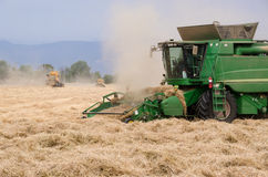 Ryegrass Harvest. A team of combines harvest ryegrass in Oregon's Willamette Valley stock photo