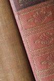 Ryggar av två böcker Royaltyfri Bild