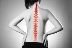 Ryggen smärtar, kvinnan med ryggvärk och knipet i halsen, svartvitt foto med den röda ryggraden arkivbilder